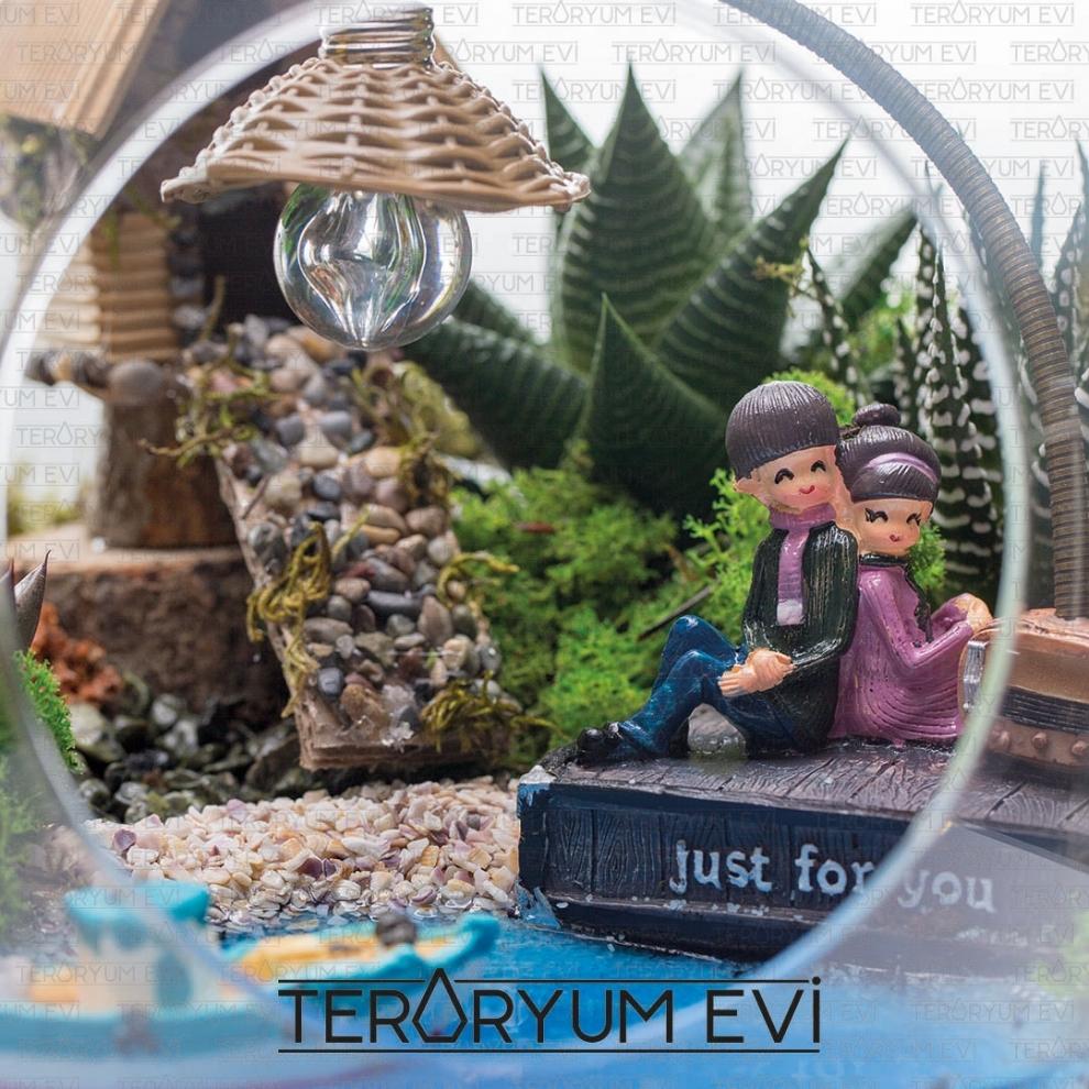 https://www.teraryumevi.com/