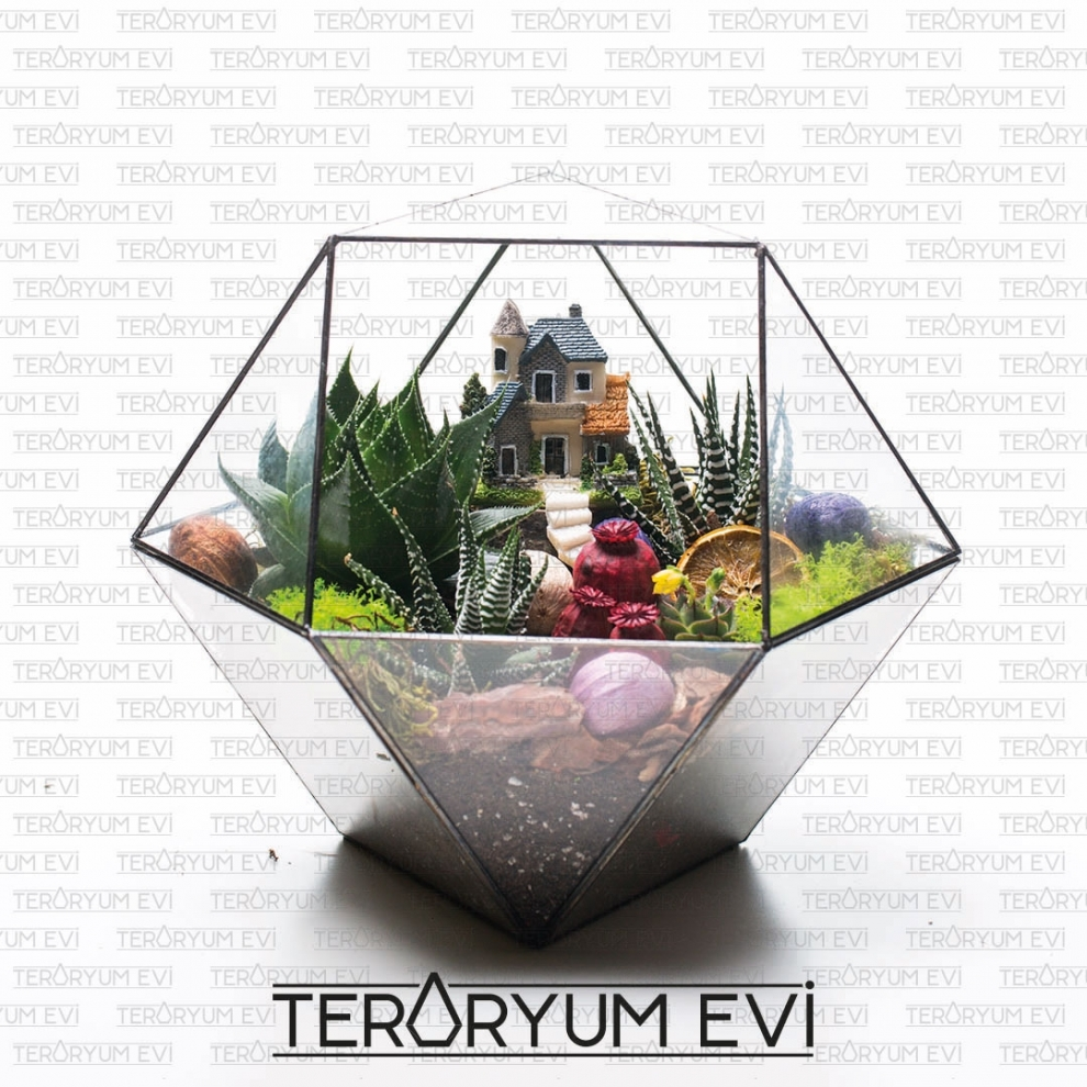 Teraryum Huzur