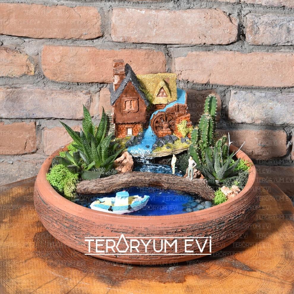 Teraryum Minyatür Bahçeler Izmir Teraryum Tasarım Evi Teraryum Evi