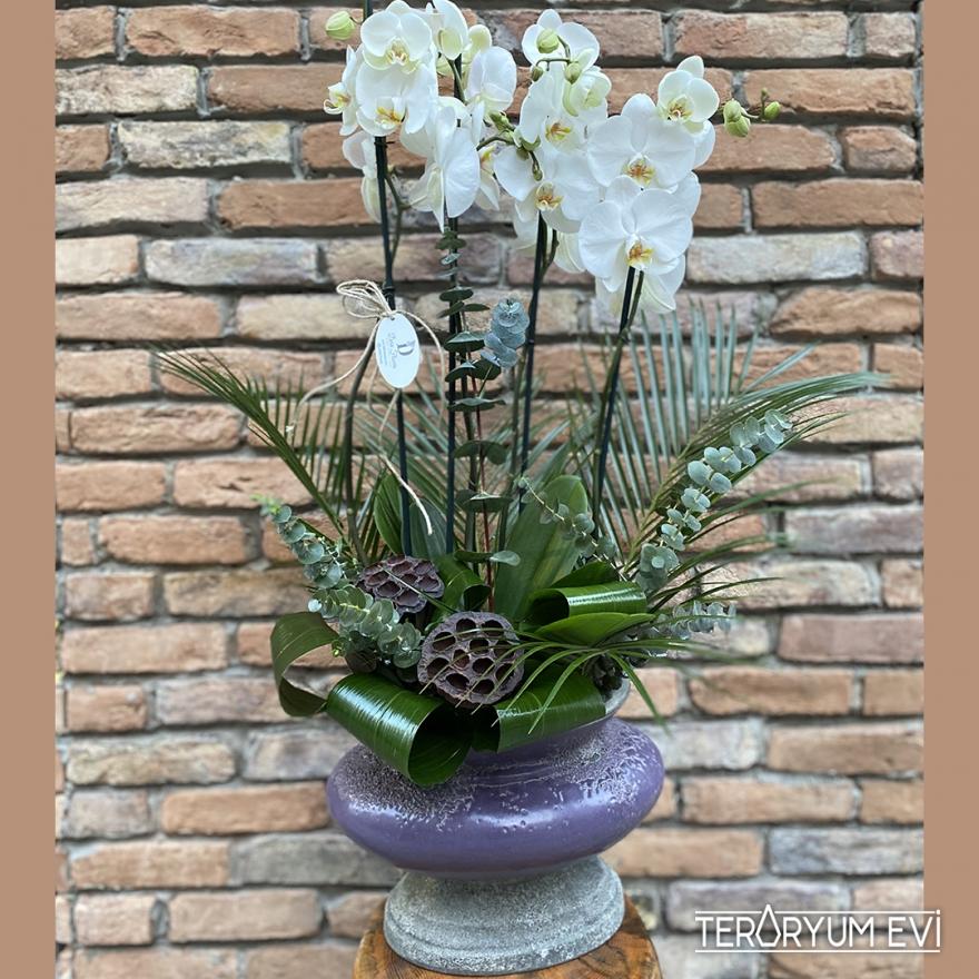 Seramikte Orkide Tasarım