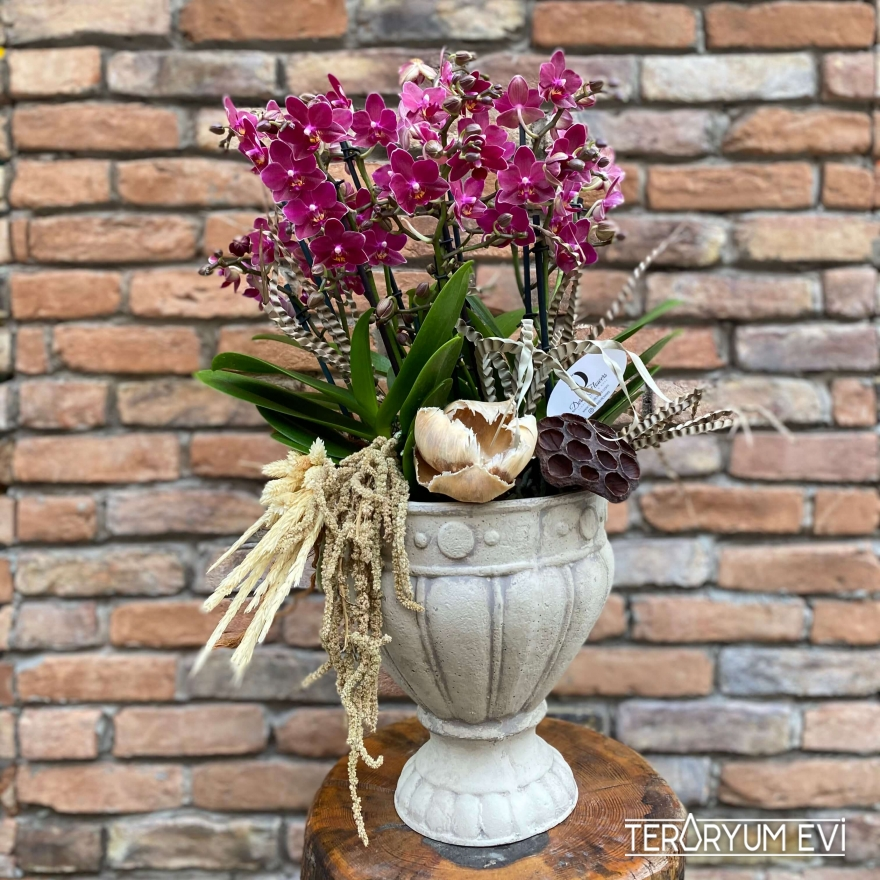 Kupa Seramikte Multi Orkide