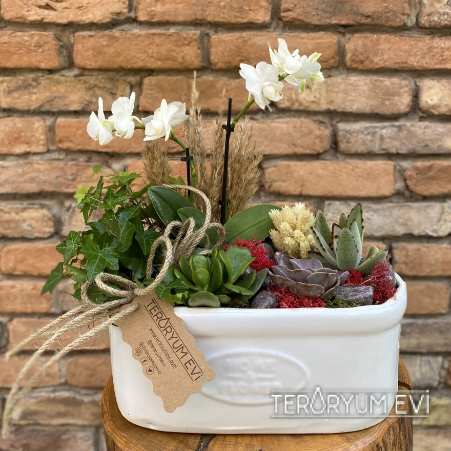 Seramikte Bitki Tasarımı