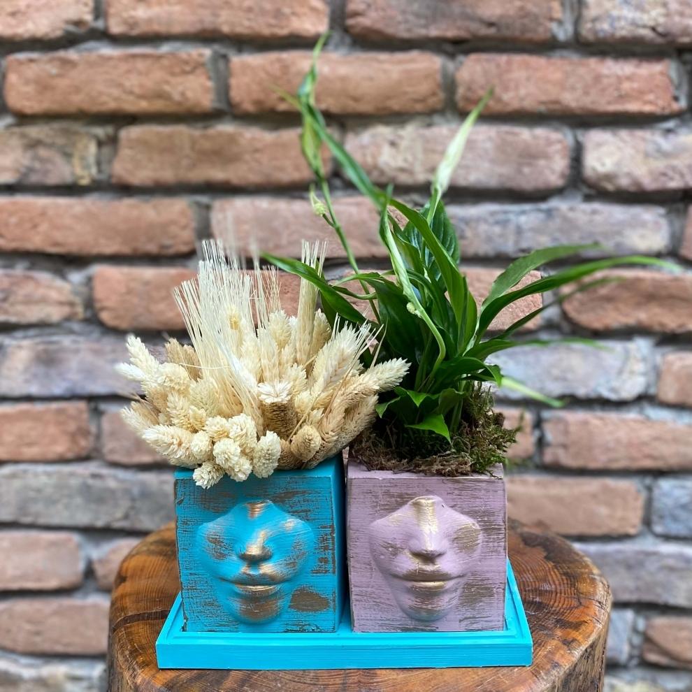 Barış Çiçeği ( Spatifilyum ) Tasarım