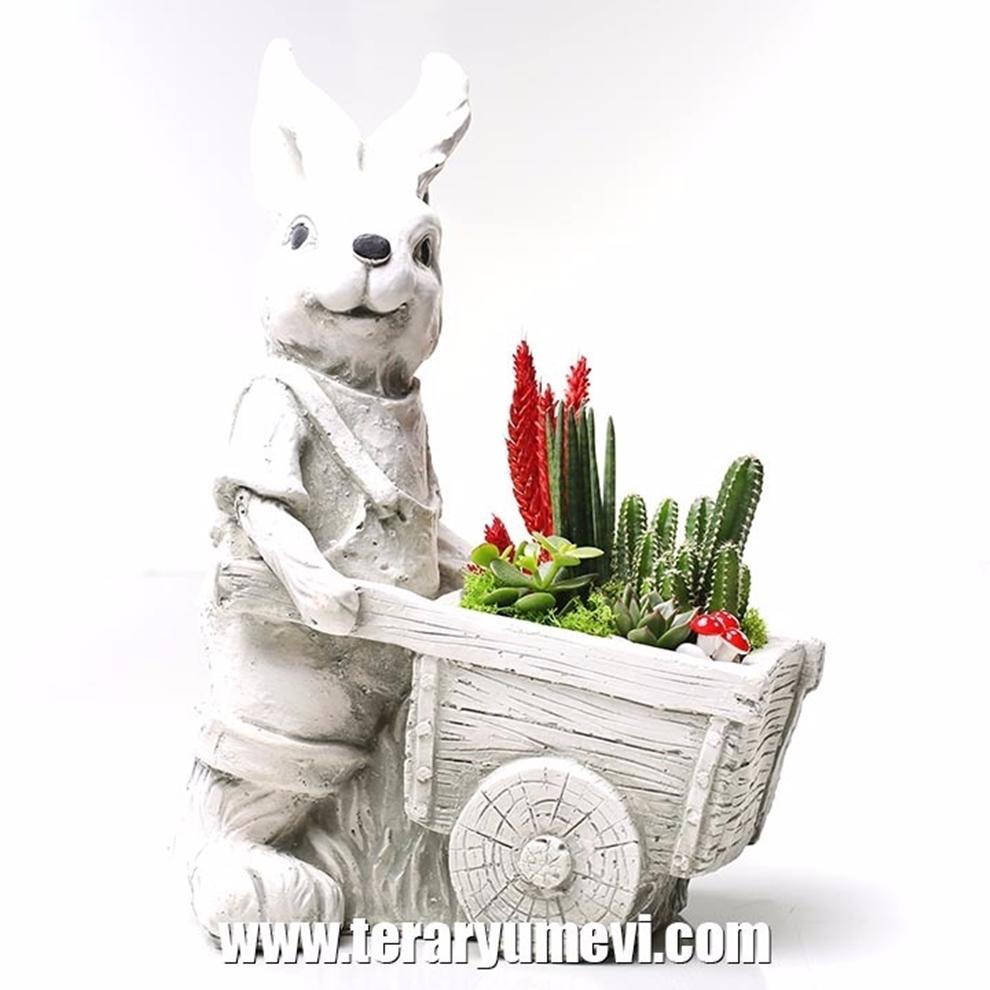 Tavşan Teraryum