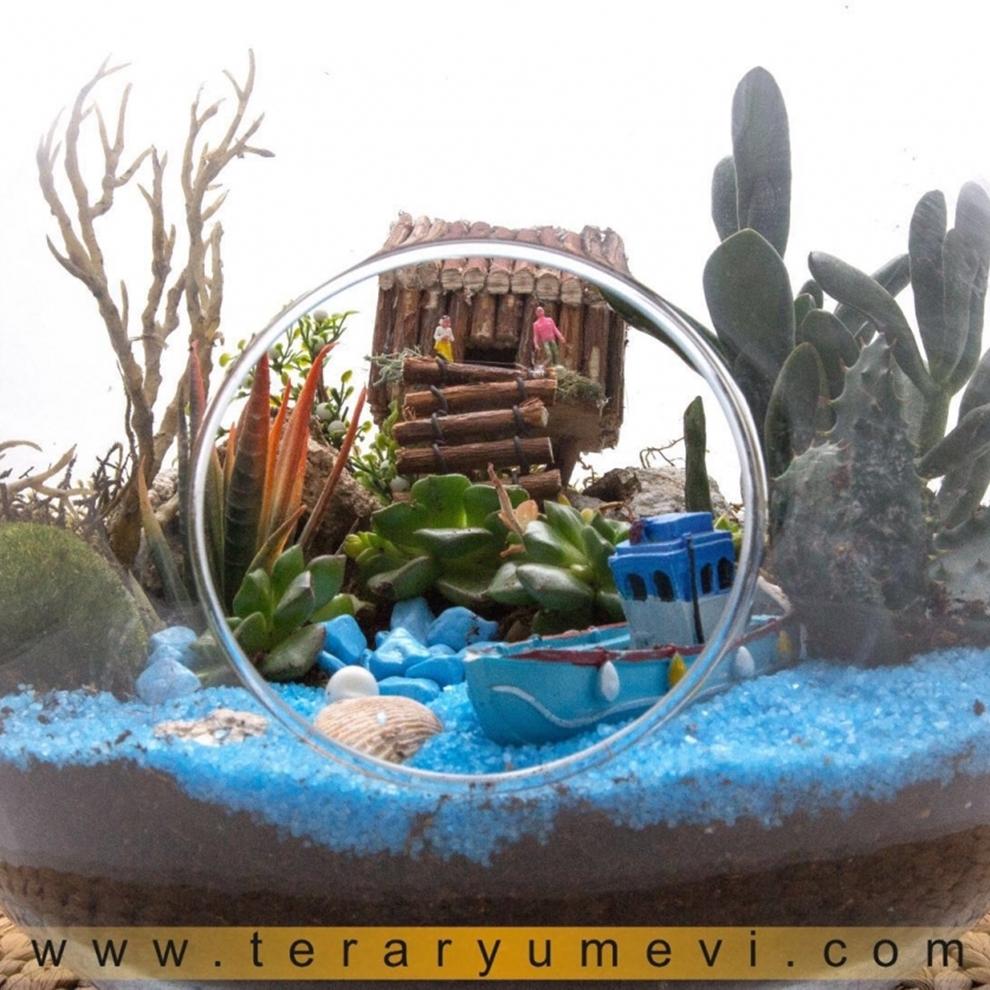 Natural Teraryum