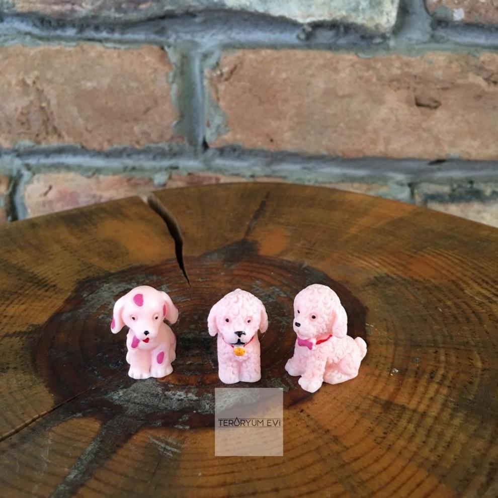 Teraryum Minyatür Köpek